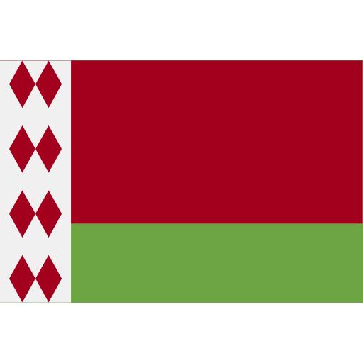 Беларусь flag