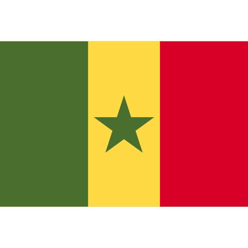 Сенегал flag