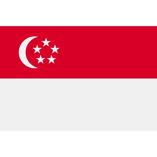 Сингапур flag