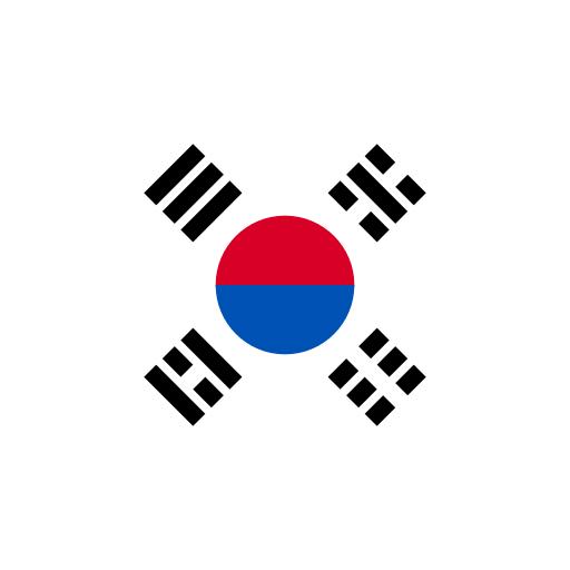 Южная Корея flag