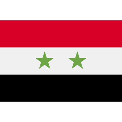 Сирия flag
